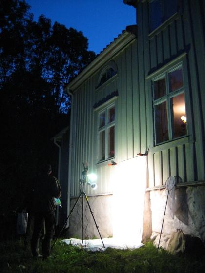 naturnatten 2009 11 fjarilslampa